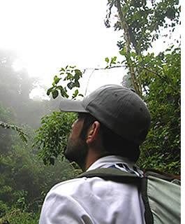 Avec un oiseau regarder guide expérimenté vous avez une meilleure chance d'apercevoir un Quetzal