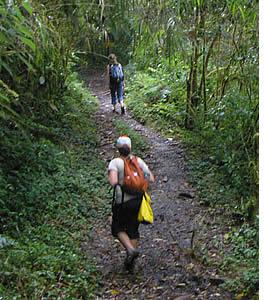 Sentier de randonnée pédestre le Quetzal à Boquete au Cerro Punta a ses avantages