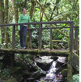 Randonnée El Sendero de Los Quetzales est une expérience merveilleuse